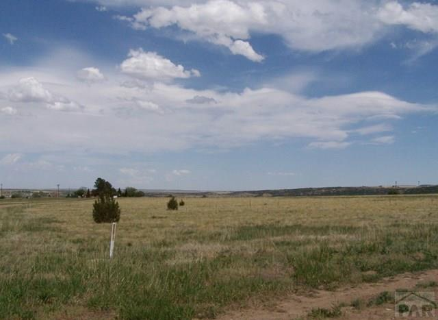 Single Family Land - Colorado City, CO (photo 2)