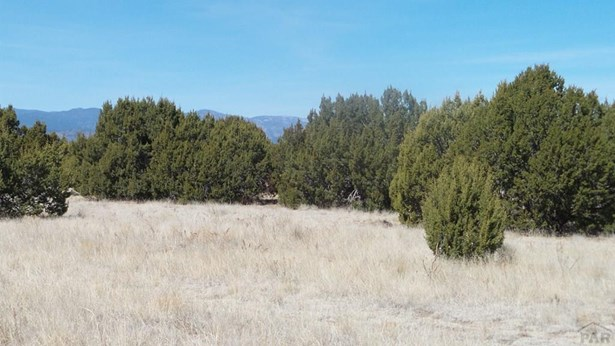 Single Family Land - Pueblo, CO (photo 3)