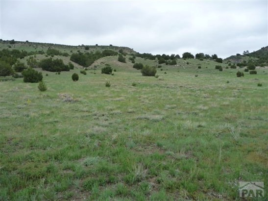 Single Family Land - Beulah, CO (photo 1)