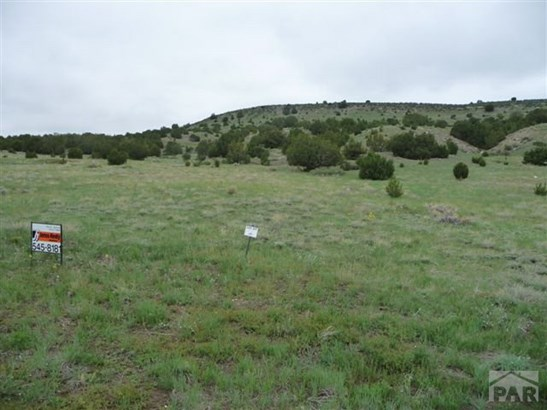Single Family Land - Beulah, CO (photo 2)