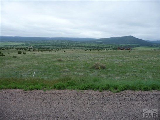 Single Family Land - Beulah, CO (photo 4)