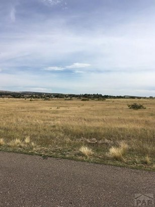 Single Family Land - Colorado City, CO (photo 4)