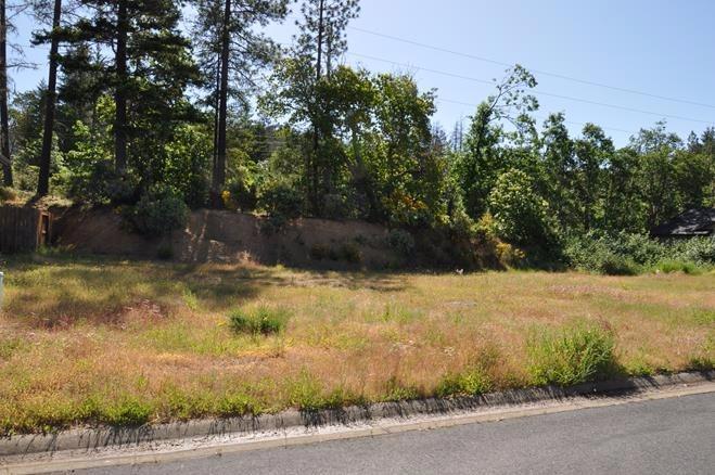 253 Cedar Ridge , Cave Junction, OR - USA (photo 2)