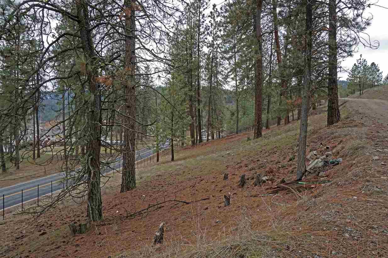 67xx W Hwy 291 , Tumtum, WA - USA (photo 4)