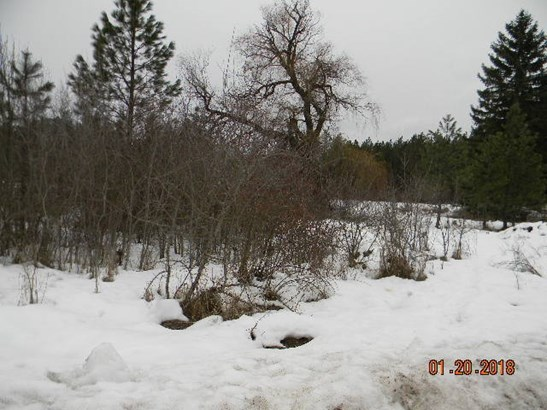 8 Lots Tbd River Rd , Usk, WA - USA (photo 4)