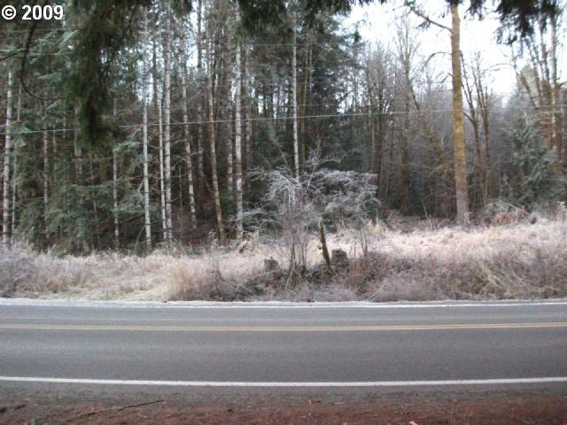 Timber (tax Lot 204) Rd , Vernonia, OR - USA (photo 1)