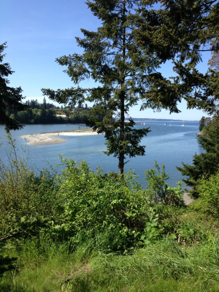 115 Hadlock Bay Rd , Port Hadlock, WA - USA (photo 1)