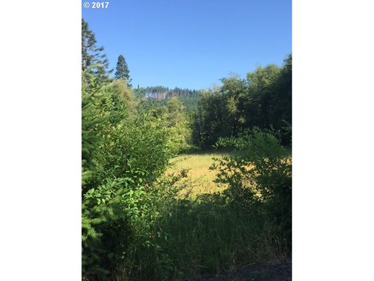 54375 Timber Rd , Vernonia, OR - USA (photo 5)