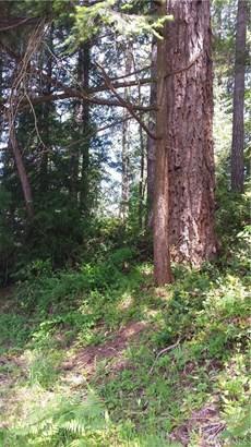 161 E Lake Forest Dr , Allyn, WA - USA (photo 1)