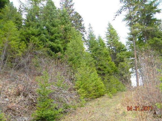 000 Sullivan Lake Rd , Ione, WA - USA (photo 2)