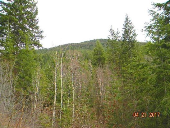 000 Sullivan Lake Rd , Ione, WA - USA (photo 5)