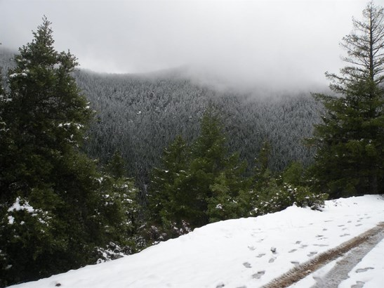 0 Bull Creek Rd , Wilderville, OR - USA (photo 2)