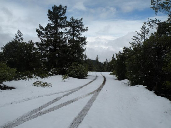 0 Bull Creek Rd , Wilderville, OR - USA (photo 4)