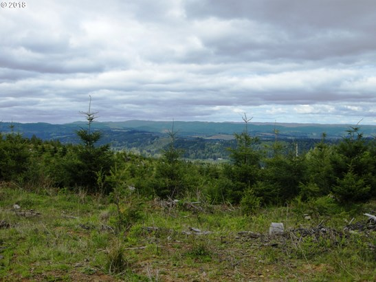 0 Soda Springs Rd , Forest Grove, OR - USA (photo 2)