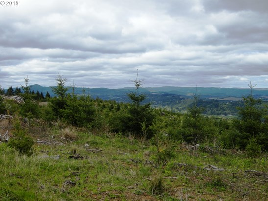 0 Soda Springs Rd , Forest Grove, OR - USA (photo 3)