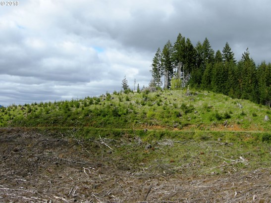 0 Soda Springs Rd , Forest Grove, OR - USA (photo 4)