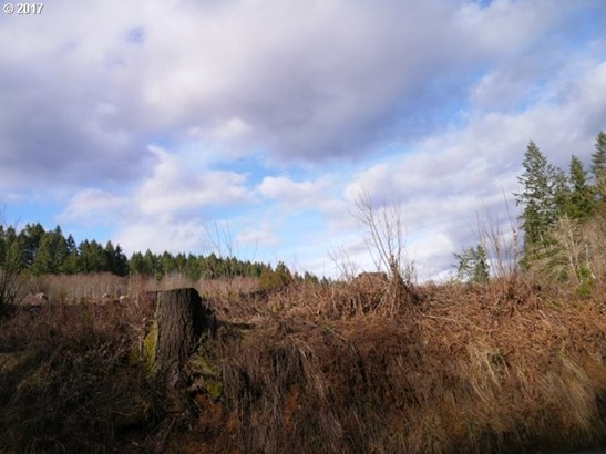 Dowd Rd , St. Helens, OR - USA (photo 1)