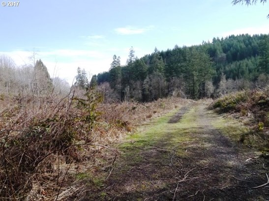 Dowd Rd , St. Helens, OR - USA (photo 2)