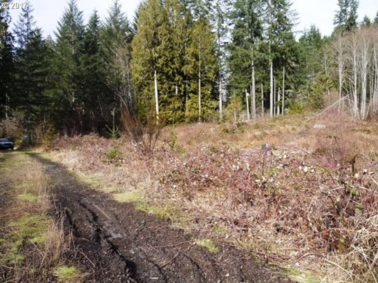 Dowd Rd , St. Helens, OR - USA (photo 5)