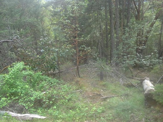 0 Savage Creek Rd , Rogue River, OR - USA (photo 4)