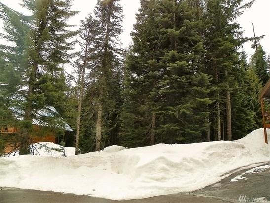 30 Garmisch Place , Snoqualmie Pass, WA - USA (photo 2)