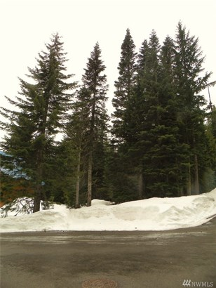 30 Garmisch Place , Snoqualmie Pass, WA - USA (photo 5)
