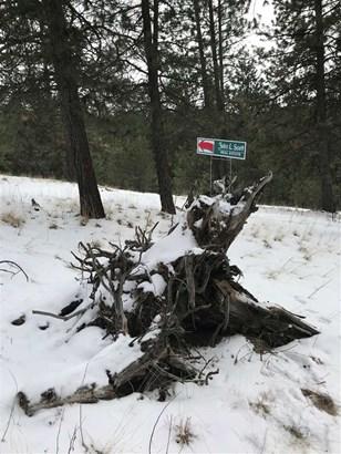 Xxx S Morrow Park Rd , Spokane, WA - USA (photo 3)