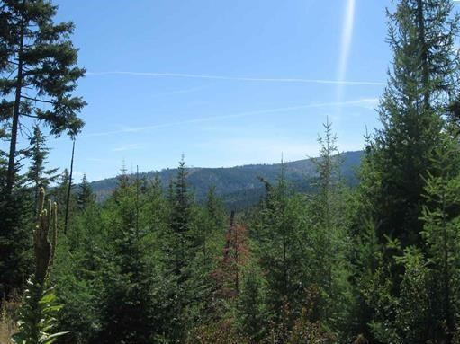 0 Cougar Ridge Ln , Priest River, ID - USA (photo 2)