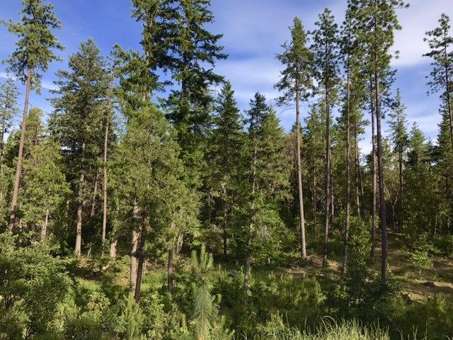 9838 W Evans Creek Rd , Rogue River, OR - USA (photo 3)