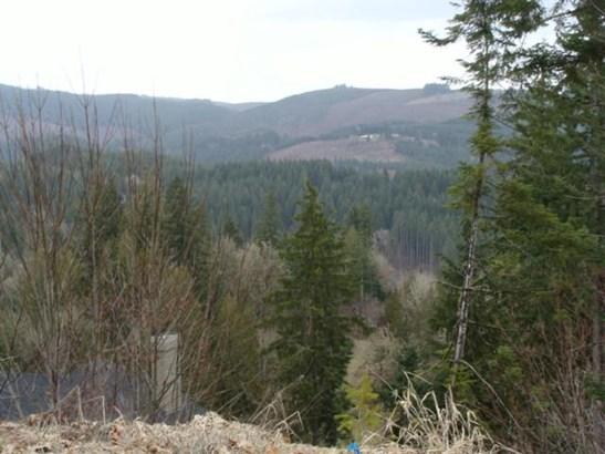 Lot 17 18 Briarwood  17/18, Scappoose, OR - USA (photo 3)