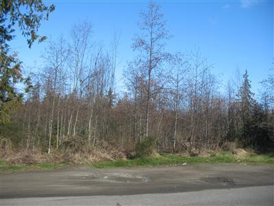 18 Lots E Craig Ave , Port Angeles, WA - USA (photo 1)