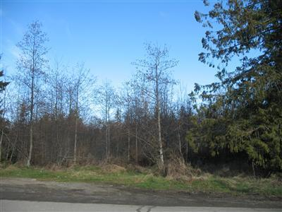 18 Lots E Craig Ave , Port Angeles, WA - USA (photo 2)