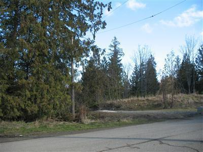 18 Lots E Craig Ave , Port Angeles, WA - USA (photo 5)