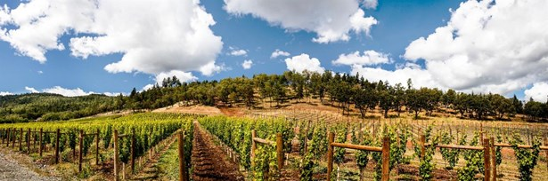 25 Vineyard View Cir , Medford, OR - USA (photo 3)