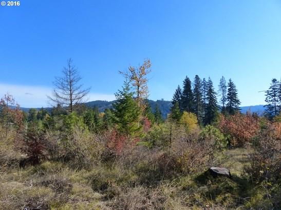 7 Pahtoe View , Trout Lake, WA - USA (photo 2)