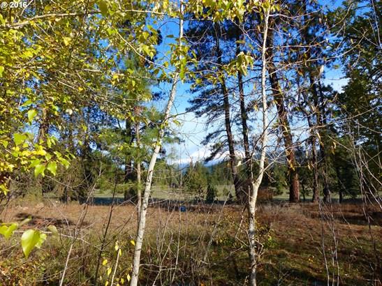 4 Pahtoe View Ln , Trout Lake, WA - USA (photo 4)