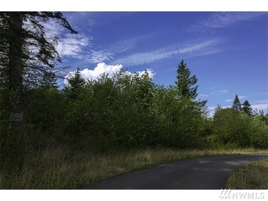 Lot 13 White Fir Way Dr , Port Hadlock, WA - USA (photo 4)