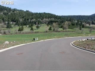 76709 Bugle Loop  Lot 6, Oakridge, OR - USA (photo 2)