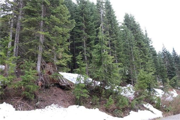 59 St Anton Strasse , Snoqualmie Pass, WA - USA (photo 2)