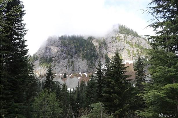 59 St Anton Strasse , Snoqualmie Pass, WA - USA (photo 3)