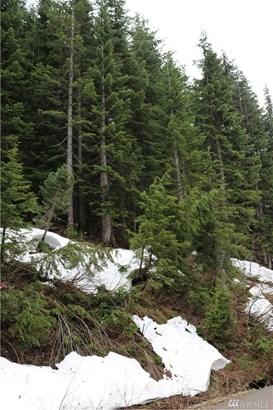 59 St Anton Strasse , Snoqualmie Pass, WA - USA (photo 5)