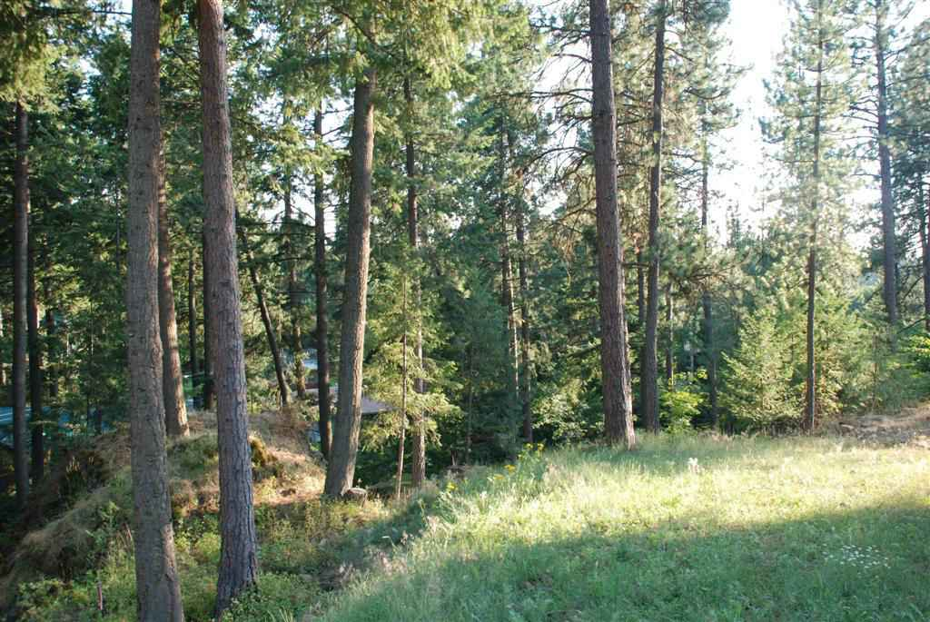 10410 N Lakeview Dr , Hayden Lake, ID - USA (photo 2)