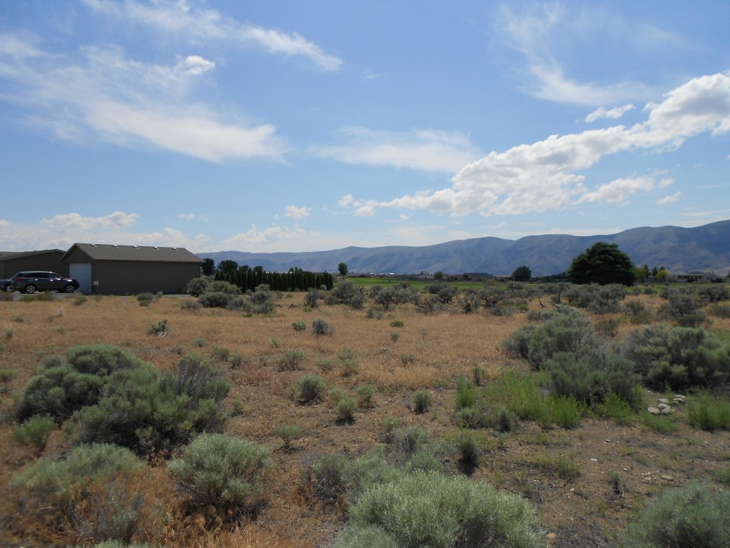 817 Desert Aire Dr Sw , Mattawa, WA - USA (photo 2)