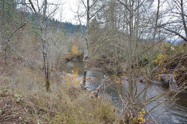 160 Wilderville Ln , Grants Pass, OR - USA (photo 5)
