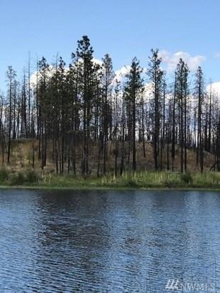 Nhn Emerald Lake Rd , Okanogan, WA - USA (photo 3)