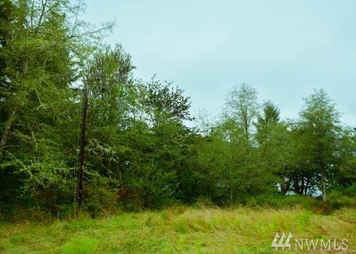 12726 Drayton Rd , Anderson Island, WA - USA (photo 4)