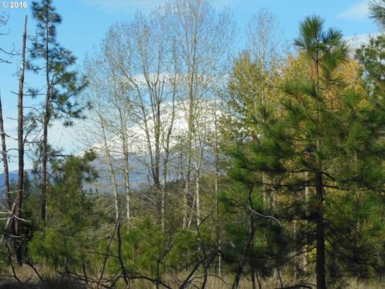 6 Pahtoe View Ln , Trout Lake, WA - USA (photo 4)