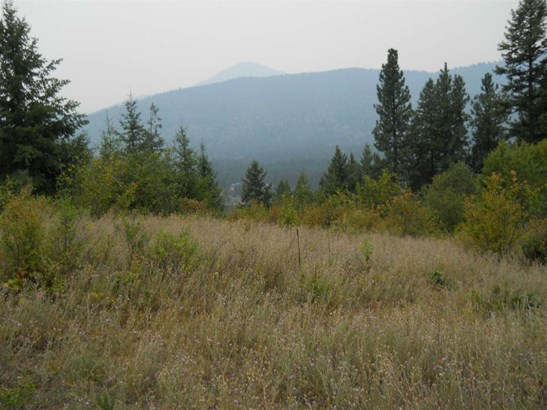 1163 Catamount Ridge Ln , Cusick, WA - USA (photo 3)