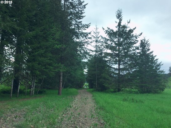 Timber Rd , Vernonia, OR - USA (photo 2)