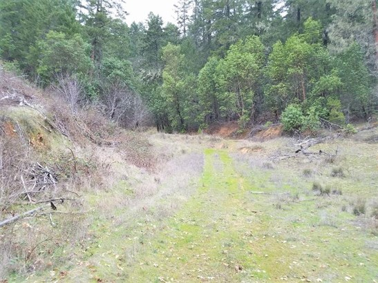 101 Lower Grave Creek Rd , Wolf Creek, OR - USA (photo 5)